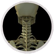 Bones Of The Head And Neck Round Beach Towel
