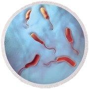 Cholera Bacteria Round Beach Towel
