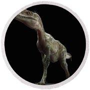 Dinosaur Monolophosaurus Round Beach Towel