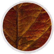 Dogwood Leaf Backlit Round Beach Towel
