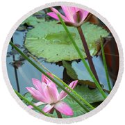 Pink Water Lily Pond Round Beach Towel