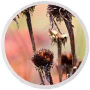 Wilted Flower  Round Beach Towel