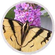 #859 D480 Swallowtail 2010.jpg Round Beach Towel