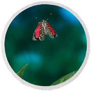 89 Butterfly In Flight Round Beach Towel