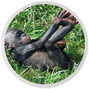 Bonobo Baby Round Beach Towel