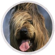 Briard Dog Round Beach Towel