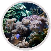 Underwater Life Round Beach Towel