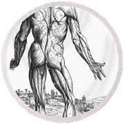 Vesalius: Muscles, 1543 Round Beach Towel