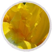 Yellow Iris 2 Round Beach Towel