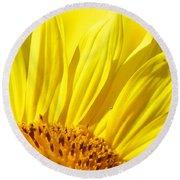 #923 D718 You Are My Sunshine. Sunflower On Colby Farm Round Beach Towel