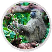A Baboon In African Bush Round Beach Towel