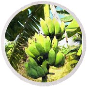 A Banana Field In Late Afternoon Sunlight With Sky And Clouds Round Beach Towel