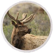 A Beautiful Young Rack Round Beach Towel