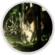 A Buck Deer Grazes Round Beach Towel