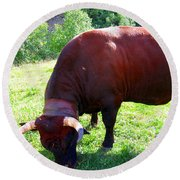 A Bull  Grazing On The Meadow Round Beach Towel
