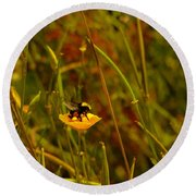 A Bumble In A Cup Round Beach Towel