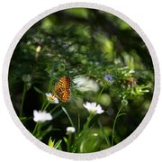 A Butterfly's World Round Beach Towel by Belinda Greb