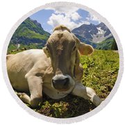 A Calf In The Mountains Round Beach Towel