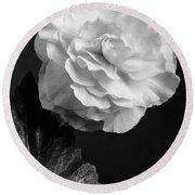 A Camellia Flower Round Beach Towel