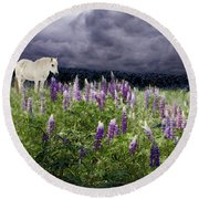 A Childs Dream Among Lupine Round Beach Towel
