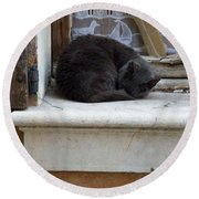 A Circled Up Cat  Round Beach Towel by Lainie Wrightson