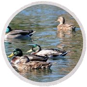A Cluster Duck Round Beach Towel