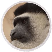 A Colobus Monkey Round Beach Towel