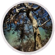 A Day Like This Round Beach Towel by Laurie Search