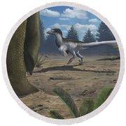 A Deinonychosaur Leaves Tracks Round Beach Towel