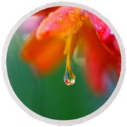 A Delicate Touch - Water Droplet - Orange Flower Round Beach Towel