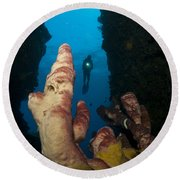 A Diver Looks Into A Cavern Round Beach Towel by Steve Jones