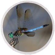 A Dragonfly Iv Round Beach Towel