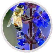 A European Honey Bee And It's Flowers Round Beach Towel