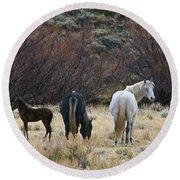 A Family Of Three - Wild Horses - Green Mountain - Wyoming Round Beach Towel