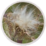 A Feather's Weight In Gold Round Beach Towel