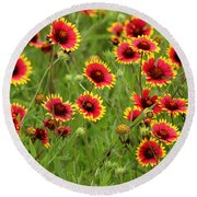 a field of Indian Blankets Round Beach Towel