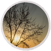 A Filigree Of Branches Framing The Sunrise Round Beach Towel