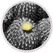 A Flower Among Thorns Round Beach Towel