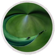 A Fly And His Shadow Polar View Round Beach Towel