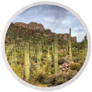 A Forest Of Saguaros  Round Beach Towel