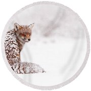 A Red Fox Fantasy Round Beach Towel