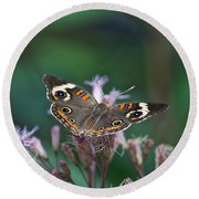 A Friendly Butterfly Smile Round Beach Towel