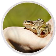 A Frog In The Hand Round Beach Towel