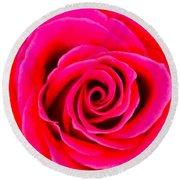 A Fuschia Pink Rose Round Beach Towel