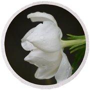 A Gardenia Profile Round Beach Towel