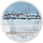 A Gathering Of Pelicans Round Beach Towel