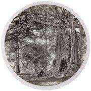 A Gentleman Sitting Beneath A Large Native Tree In British Ceylon Round Beach Towel