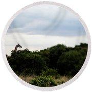 A Giraffe Giraffa Camelopardalis Among Round Beach Towel