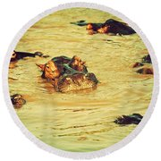 A Group Of Hippos In A River. Tanzania Round Beach Towel