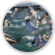 A Group Of Pelicans Round Beach Towel